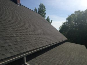intricate roofing